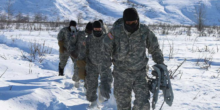 defense operators in alaskan wilderness