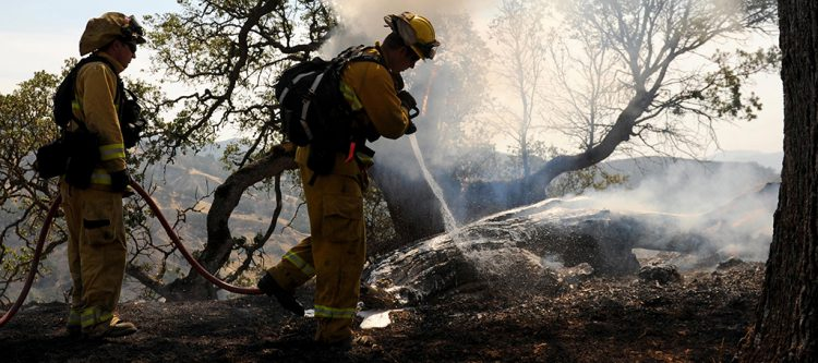 wildland firefighters
